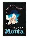 Poster for Colomba Motta  Dove