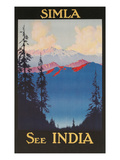 See India  Travel Poster for Simla