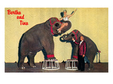 Bertha and Tina  Circus Elephants