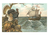 Urkey Watching Mayflower Arrival