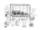 Chocolate Easter Bunny - Cartoon