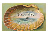 Souvenir from Cape May  New Jersey  Clam