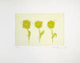 Drei kleine Gelbe (2001)