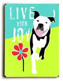 Live with Joy 2