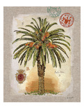 Linen Date Palm Tree