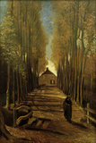 Poplar Avenue in Autumn  October 1884