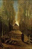 Poplar Avenue in Autumn  October 1884