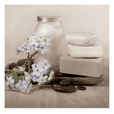 Hydrangea and Soap