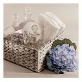 Hydrangea and Basket 2