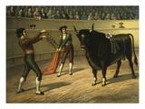 Bullfight  C1900