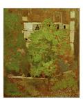 Chestnut Trees in Rue Truffaut (in the 17th Arrondissement in Paris)  c1900