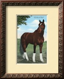 Whirlaway  Kentucky Derby Winner