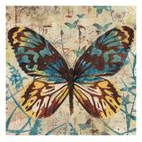 Butterfly Beauty 1