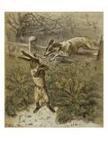 Das Häschen (Little Rabbit)  1863