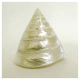 Shell I (oversize)