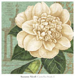 Camellia Study I