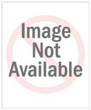 Blue Jay Bird Sitting on Branch Reproduction d'art par Pop Ink - CSA Images