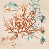 Coral Medley I Reproduction d'art par Lanie Loreth