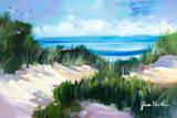 Dune Shoreside