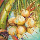 Patricia's Coconuts I