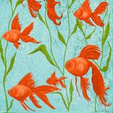 School of Fish II