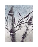 Cool Bamboo I