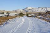 Road in Winter Snow  Dumfries and Galloway  Scotland  United Kingdom  Europe