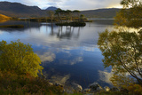 Evening Sunlight  Loch Assynt  National Nature Reserve  Sutherland  Highlands  Scotland  UK