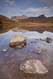 Blea Tarn and the Langdale Pikes in the Lake District National Park  Cumbria  England  UK
