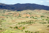 Landscape of the Highlands  Fianaranstoa Region  Madagascar  Africa