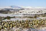 Cairnsmore of Fleet in Winter Snow  from Knocktinkle Viewpoint  Dumfries and Galloway  Scotland  UK