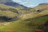 Landscape of the Highlands  Fianaranstoa Region  Madagascar  Africa