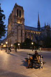 Notre Dame Cathedral at Night  Paris  France  Europe