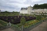Gardens  Chateau de Villandry  UNESCO Site  Indre-Et-Loire  Touraine  Loire Valley  France