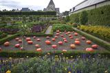 Vegetable Garden  Chateau de Villandry  UNESCO Site  Indre-Et-Loire  Touraine  Loire Valley  France
