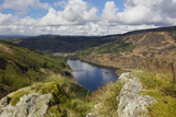 Glen Trool  Seen from White Bennan  Dumfries and Galloway  Scotland  United Kingdom  Europe
