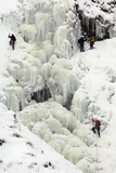 Ice Climbing on Grey Mare's Tail Waterfall  Moffat Hills  Moffat Dale  Scotland  UK