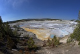 Porcelain Springs  Norris Geyser Basin  Yellowstone Nat'l Pk  UNESCO Site  Wyoming  USA