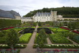 Gardens  Chateau de Villandry  UNESCO Site  Indre-Et-Loire  Touraine  Loire Valley  France