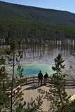 Visitors at Cistern Spring  Norris Geyser Basin  Yellowstone UNESCO Site  Wyoming  USA