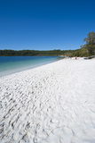 Mckenzie Lake  Fraser Island  UNESCO World Heritage Site  Queensland  Australia  Pacific