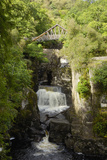 Bracklinn Falls  Callander  Loch Lomond and Trossachs National Park  Stirling  Scotland  UK