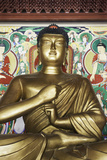 Statue of the Buddha  Pohyon Buddhist Temple  Democratic People's Republic of Korea  N Korea