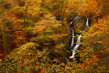 Stock Ghyll Force Waterfall in Autumn  Lake District National Park  Cumbria  England  UK