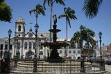 Terreiro de Jesus Square and Igreja Sao Domingos  Salvador (Salvador de Bahia)  Bahia  Brazil