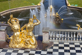 Golden Statues and Fountains of the Grand Cascade at the Peterhof Palace  St Petersburg  Russia