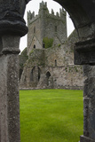 Jerpoint Abbey  County Kilkenny  Leinster  Republic of Ireland (Eire)  Europe