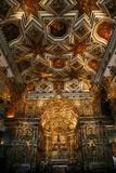 The Interior of Igreja de Sao Francisco Church  Salvador (Salvador de Bahia)  Bahia  Brazil