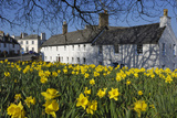 Kirkcudbright  Dumfries and Galloway  Scotland  United Kingdom  Europe