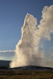 Old Faithful Geyser Erupting  Yellowstone National Park  UNESCO World Heritage Site  Wyoming  USA